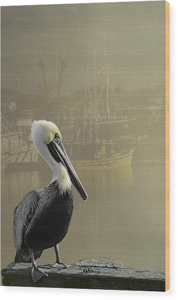 A Foggy Pelican Sunset Wood Print