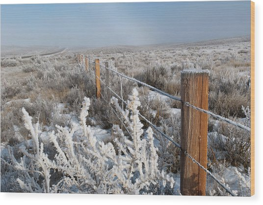 A Frosty And Foggy Morning On The Way To Steamboat Springs Wood Print