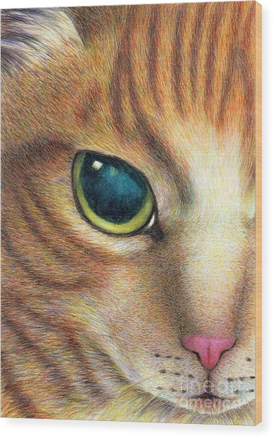 A Ginger Cat Face Wood Print