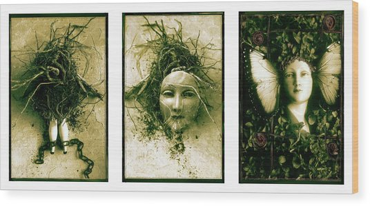 A Graft In Winter Triptych Wood Print