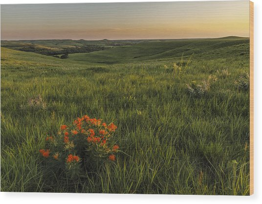 A Great View Of The Flint Hills Wood Print