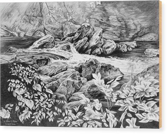 A Hiker's View - Landscape Print Wood Print