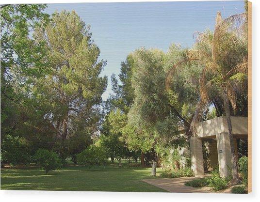 A Home In Phoenix Wood Print by Susan Heller