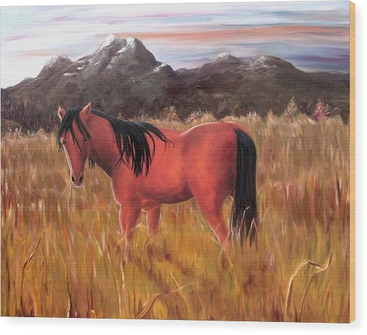 A Horse Of Course Wood Print by Diane Daigle