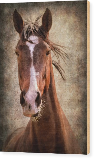 A Horse Of Course Wood Print