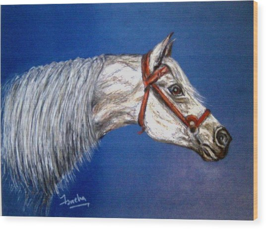 A Horse With No Name Wood Print by Fareeha Khawaja