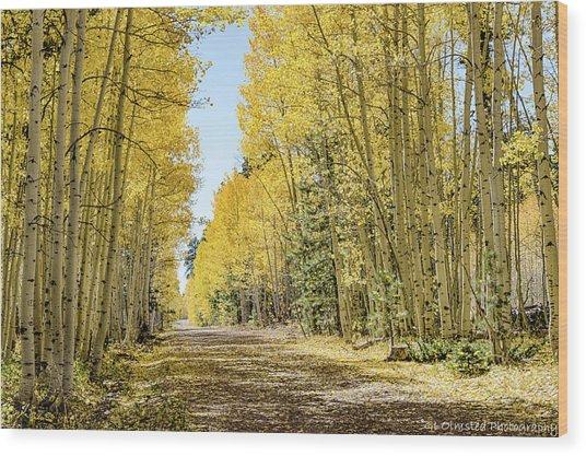 A Lane Of Gold Wood Print
