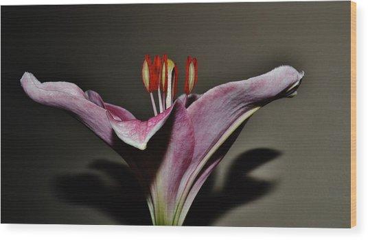 A Lily Wood Print