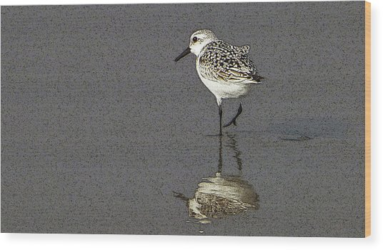 A Little Bird On A Beach Wood Print