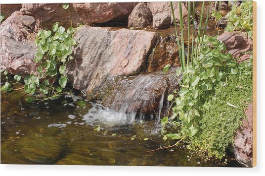 A Little Waterfall Wood Print by Susan Heller
