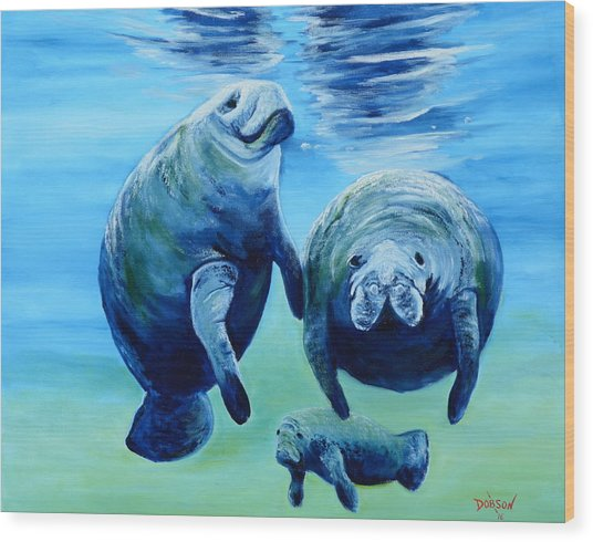 A Manatee Family Wood Print