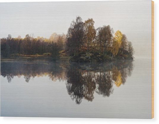 A Misty Autumn Wood Print