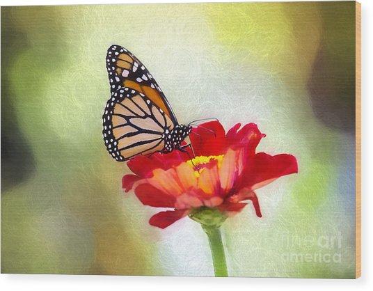 A Monarch Moment Wood Print