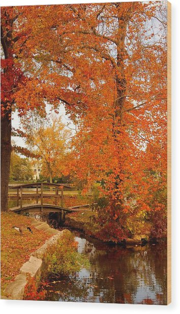 A Morning In Autumn - Lake Carasaljo Wood Print