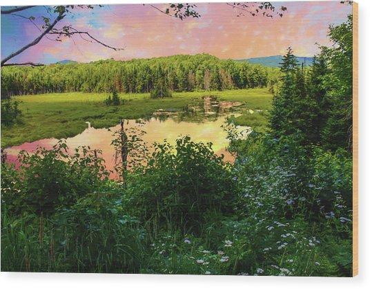 A New England Bog. Wood Print
