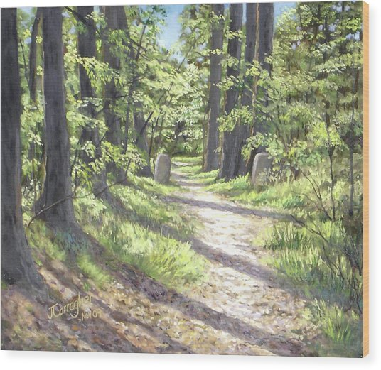 A Path Well-travelled Wood Print by Joseph Carragher