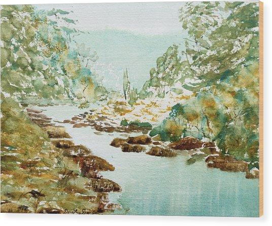 A Quiet Stream In Tasmania Wood Print
