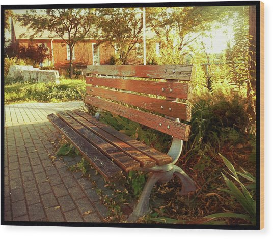 Wood Print featuring the photograph A Restful Respite by Shawn Dall