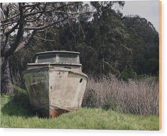 A Retired Old Fishing Boat On Dry Land In Bodega Bay Wood Print