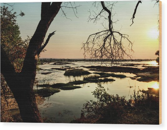 A River Sunset In Botswana Wood Print