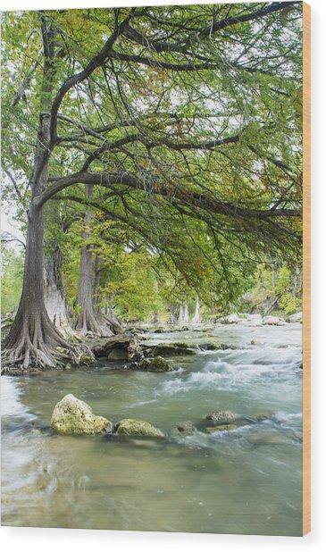 A River Under Bald Cypress Trees Wood Print