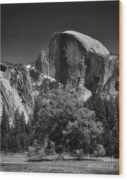 A Scene Of Yosemite - Black And White Wood Print by Hideaki Sakurai