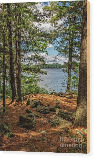 A Secluded Spot Wood Print