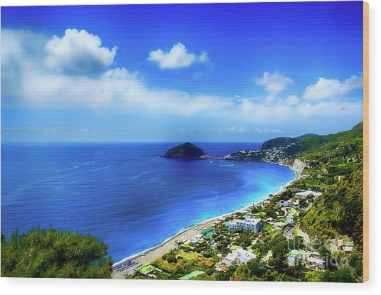 A Side Of Ischia Wood Print by Alessandro Giorgi Art Photography