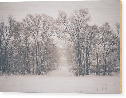 Wood Print featuring the photograph A Snowy Monday by Viviana  Nadowski