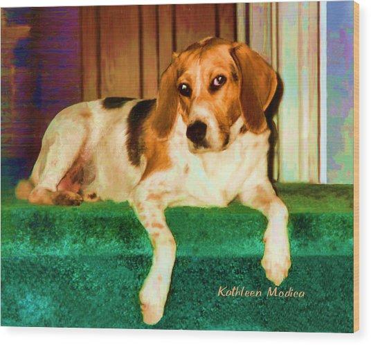 A Special Beagle Wood Print