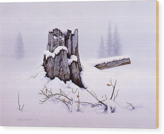 A Spiritual Experience Wood Print by Conrad Mieschke