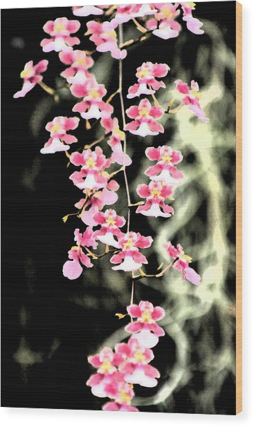 A Splash Of Pink Wood Print by Nanette Hert