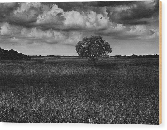 A Storm Is Coming To Wyoming Grasslands Wood Print