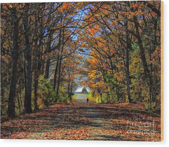 A Stroll Through Autumn Colors Wood Print