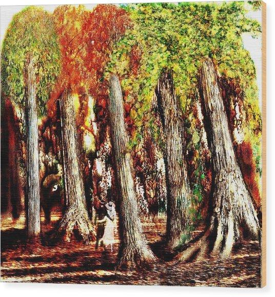 A Stroll Through The Woods Wood Print by Mark Conrad