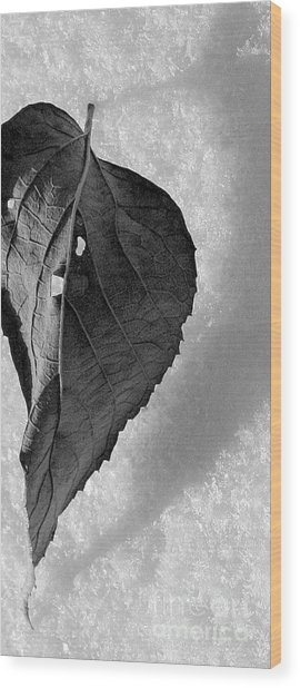 A Tattered Heart Wood Print by Julie Lueders