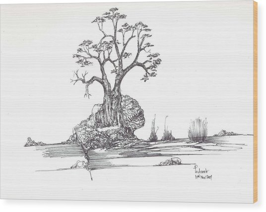 A Tree A Rock And Some Grass Wood Print by Padamvir Singh