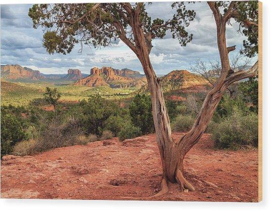 A Tree In Sedona Wood Print