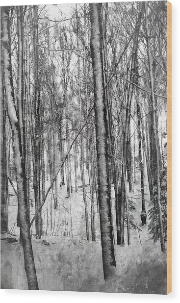 A Tree's View In Winter Wood Print
