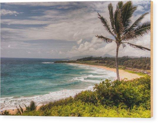 A Tropical Paradise Wood Print