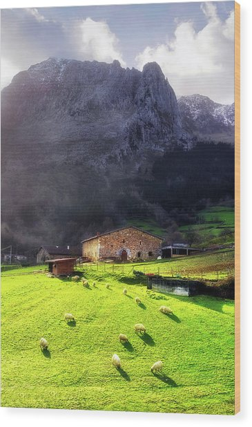 A Typical Basque Country Farmhouse With Sheep Wood Print