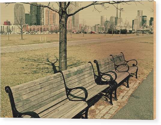 A View From A Park Bench Wood Print by JAMART Photography