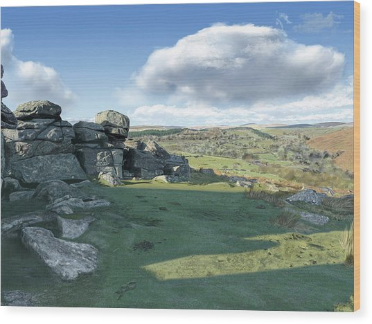 A View From Combestone Tor Wood Print
