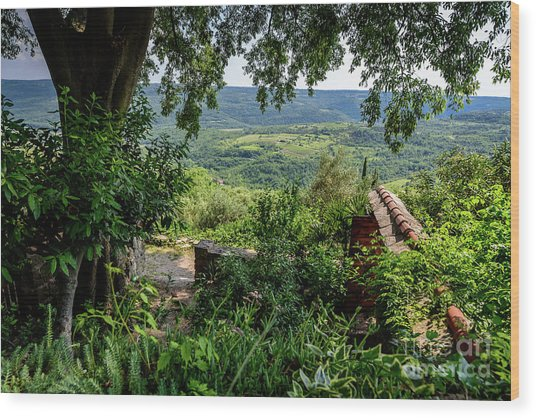 A View From Groznjan Of The Istrian Hill Town Countryside, Istria, Croatia Wood Print