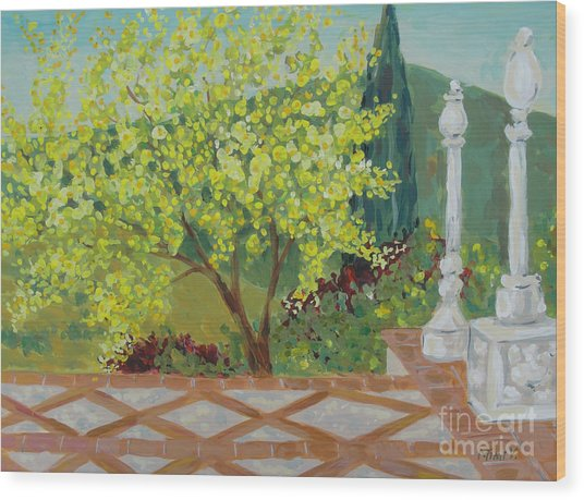 A View From Hearst Castle Wood Print