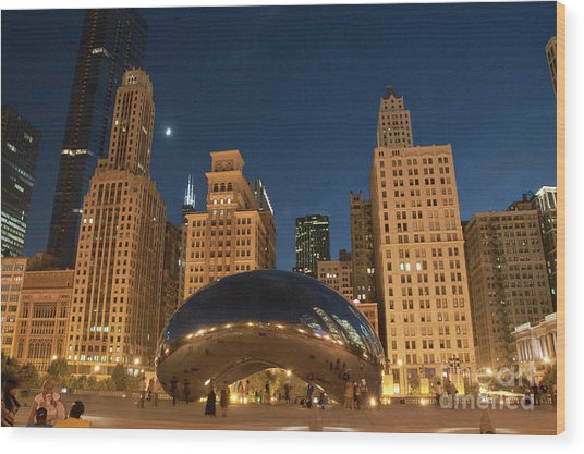 A View From Millenium Park At Night Wood Print