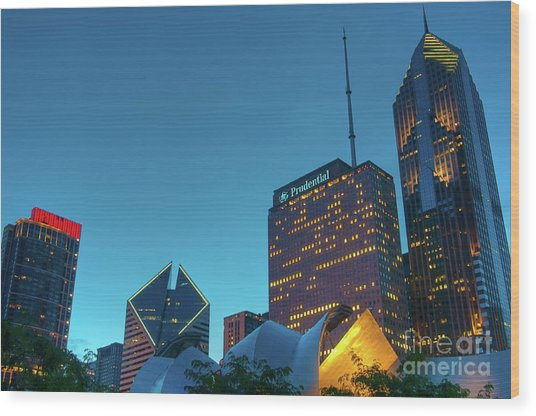 A View From Millenium Park Wood Print
