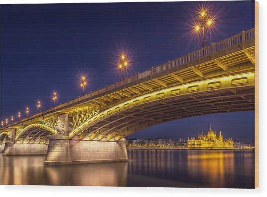 A View Of Budapest Wood Print