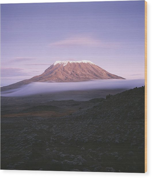 A View Of Snow-capped Mount Kilimanjaro Wood Print
