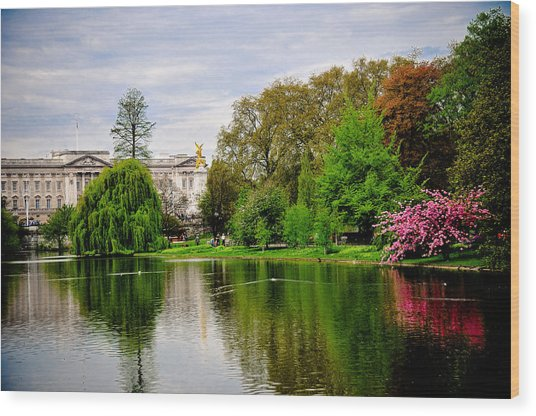 A View To The Palace Wood Print by Pat Shawyer